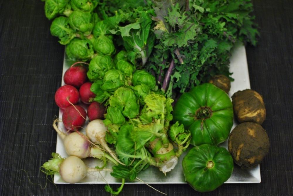 dark green veg radish and sprouts.jpg
