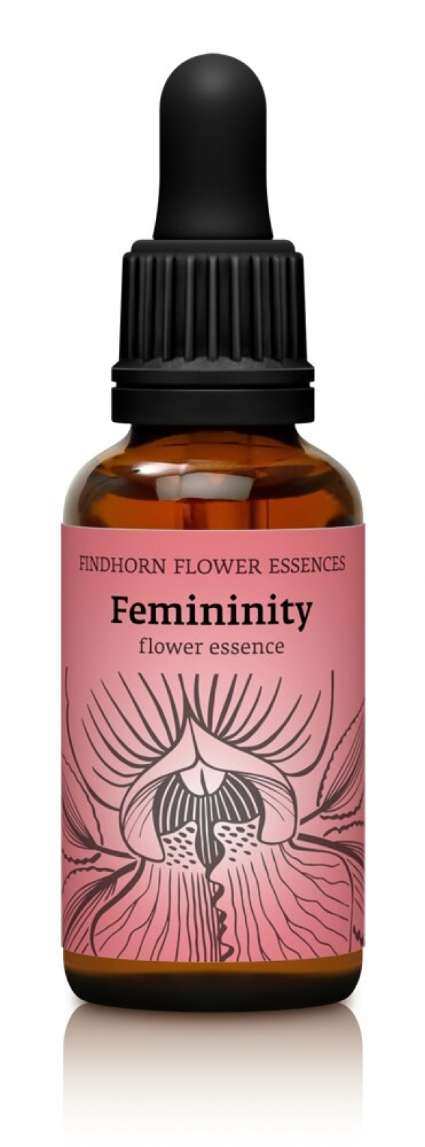 Dropper Femininity.jpg